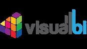 Visualbi